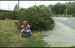La Perra Con El Color De Cabello A Altas Detrás De Un Arbusto