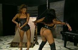 Lesbian Porn With Two Ebony Lesbians
