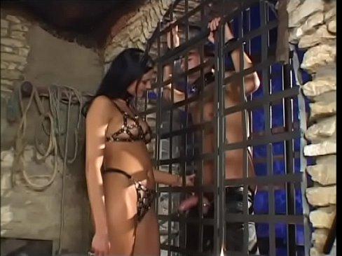 Pornstars Doing Their Best Vol. 5
